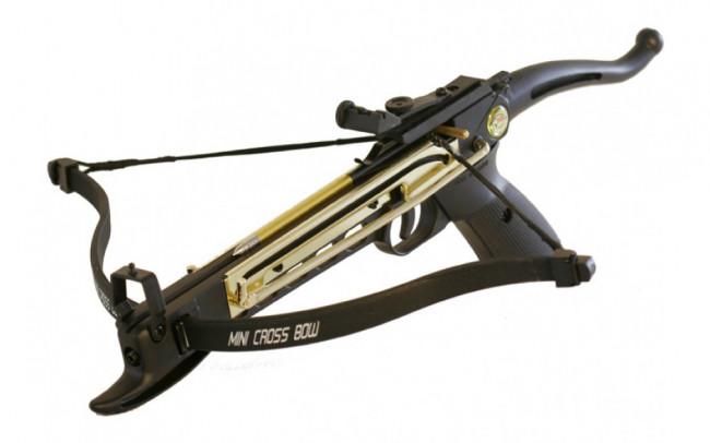 80lb Self-Cocking Aluminium Pistol Crossbow with 3 Bolts