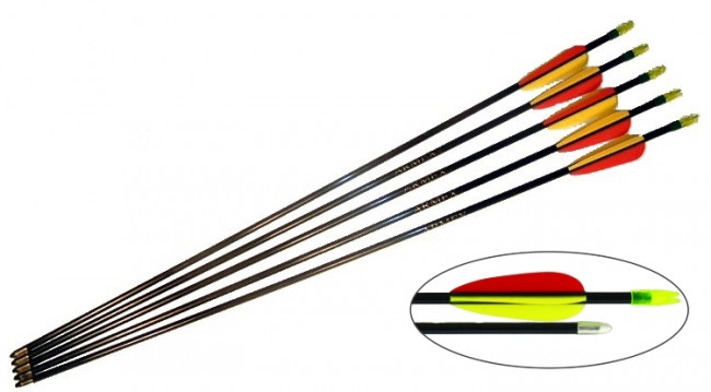 "5 x Trueflight 26"" Fibreglass Archery Arrows with SafetyTips for Target Practice"