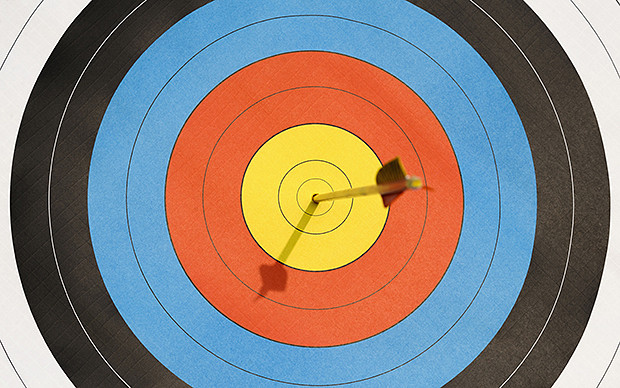 Official World Archery Fita 40cm Heavy Laminated Target