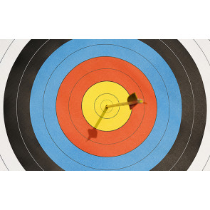 Official World Archery FITA 40cm Heavy Laminated Target Faces - Roll of 10 Sheets